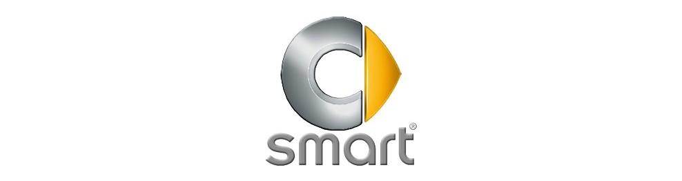 Mandos de coche Smart