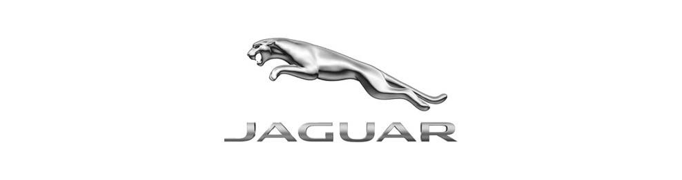 Mandos de coche Jaguar